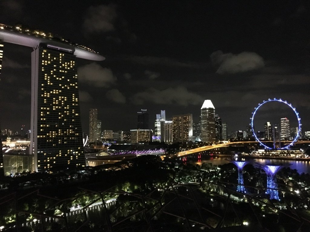 Singapur desde el SuperTree by IndoChine Rooftop Bar