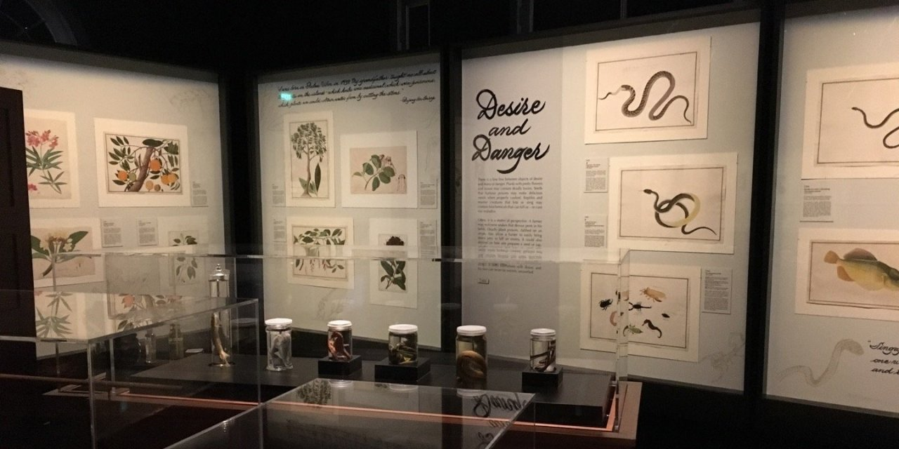 El Museo Nacional de Singapur