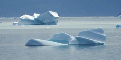 Icebergs en el Qooroq
