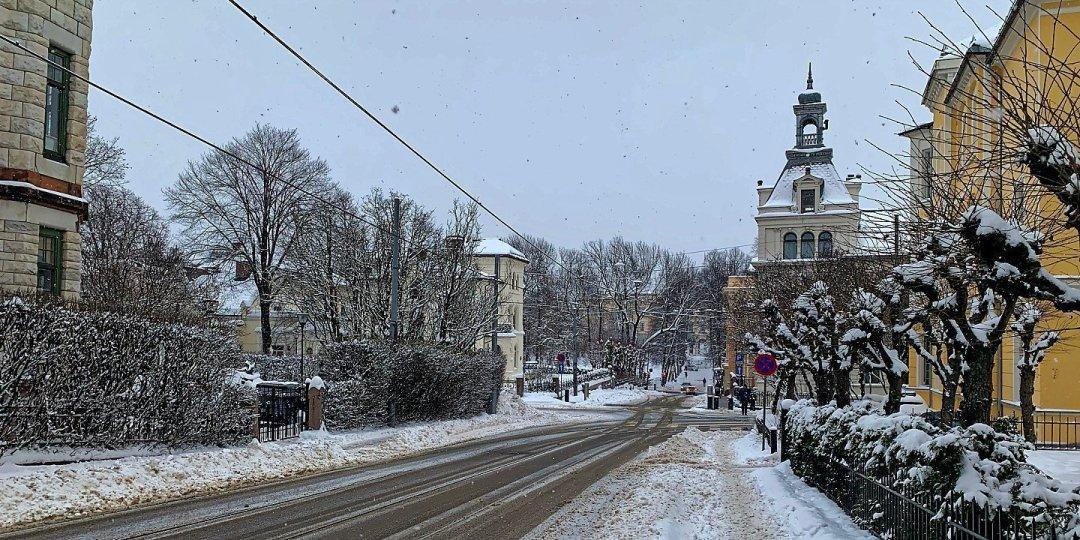 Calle Riddervolds