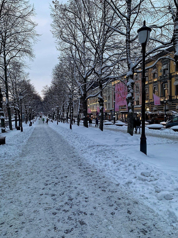 Calle de Karl Johan