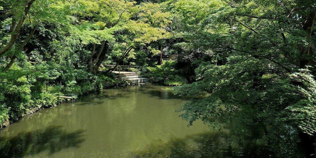 Estanque junto a Shirahata-Jinja