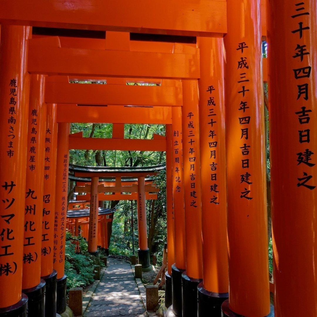 Descendiendo del monte Inari 1