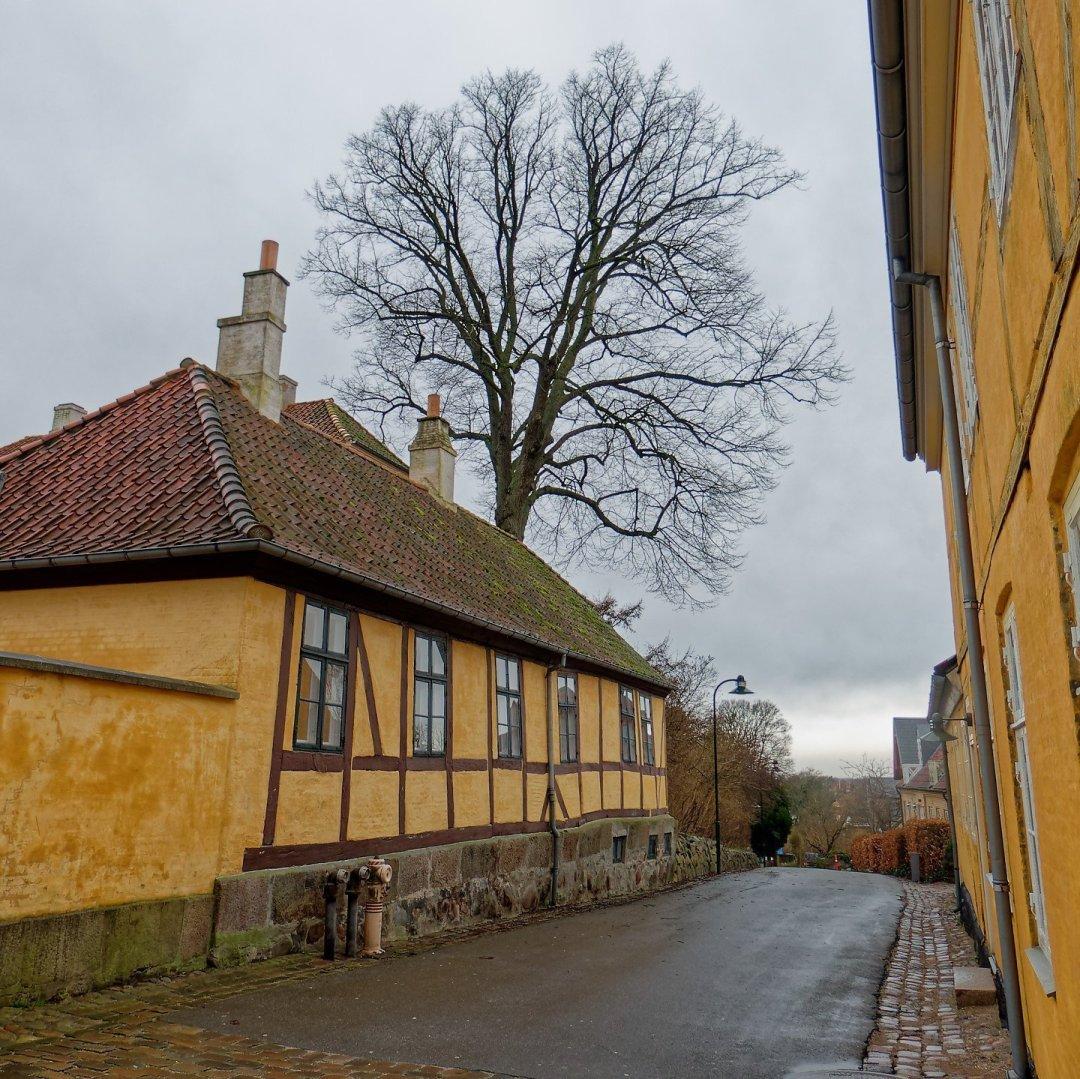 Callejeando en Roskilde
