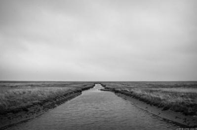 Langeoog-2783