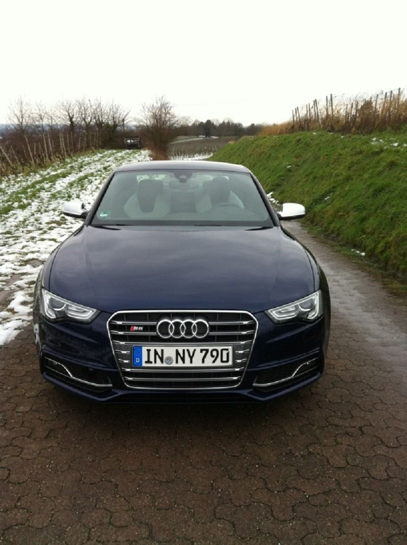 S5 frontal