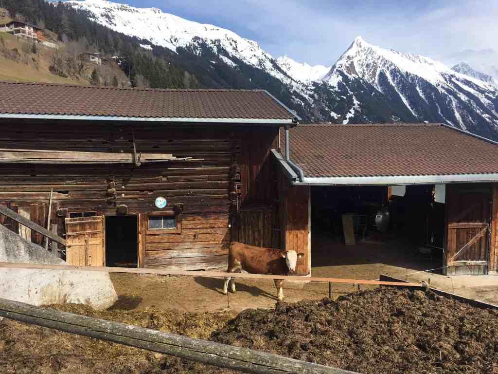 Auszeit in Mayrhofen: Hotel Elisabeth - Refugium für Erwachsene