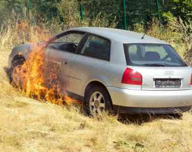 Ratgeber: Hohe Gräser werden schnell zur Brandfalle