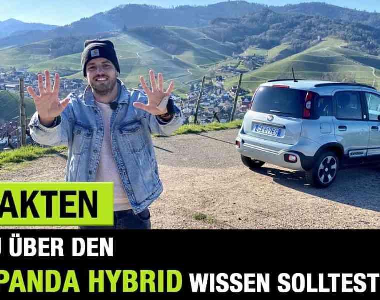 10 Fakten zum neuen Fiat Panda Hybrid, Jan Weizenecker