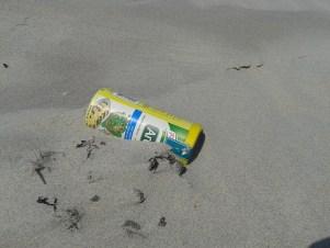 Diese Dose fand Lea H. am Strand. Leider war sie leer.