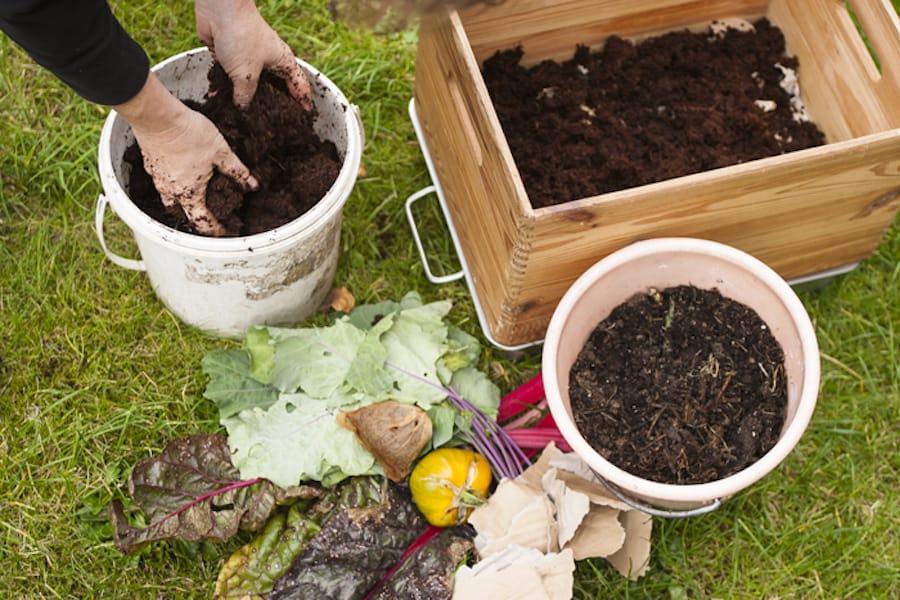DIY Wurmkomposter füllen