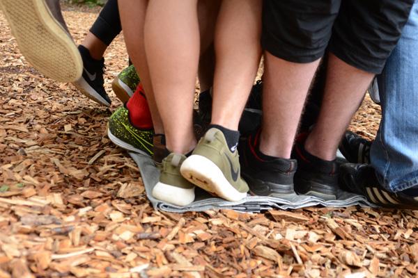 Alle für einen - Teamtag im Kletterwald
