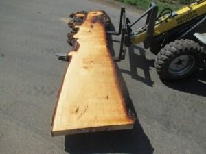 Tischplatte nach mass Kastanie B-00119