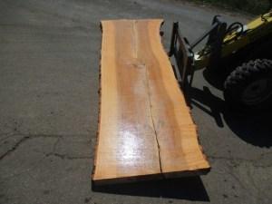 Kaufen Tischplatten nach Mass Esche R-00100