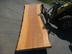 Kaufen Tischplatten nach Mass Esche R-00102