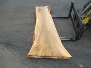 Tischplatte nach mass Ulme B-00216