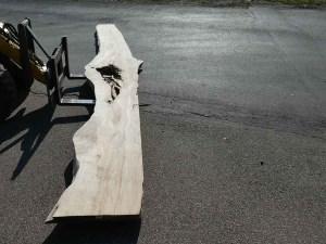 Holzplatten massiven Esche E/K 069