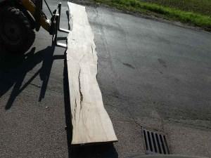 Holzplatten massiven Esche E/K 070