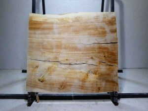 Tischplatte aus Massivholz Pappel C/W 072