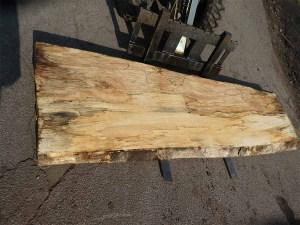 Holzplatten kaufen Buche O-00235