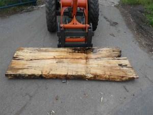 Holzplatten kaufen Buche O-00275