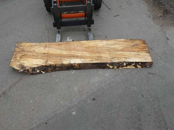Holzplatten kaufen Buche O-00293