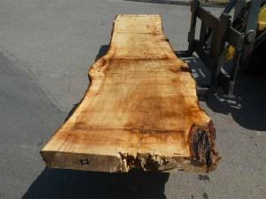 Holzplatten kaufen Pappel S-00082