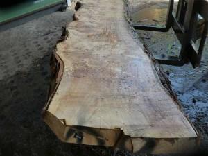 Holzplatten kaufen Pappel S-00098