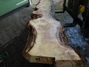 Holzplatten kaufen Pappel S-00099