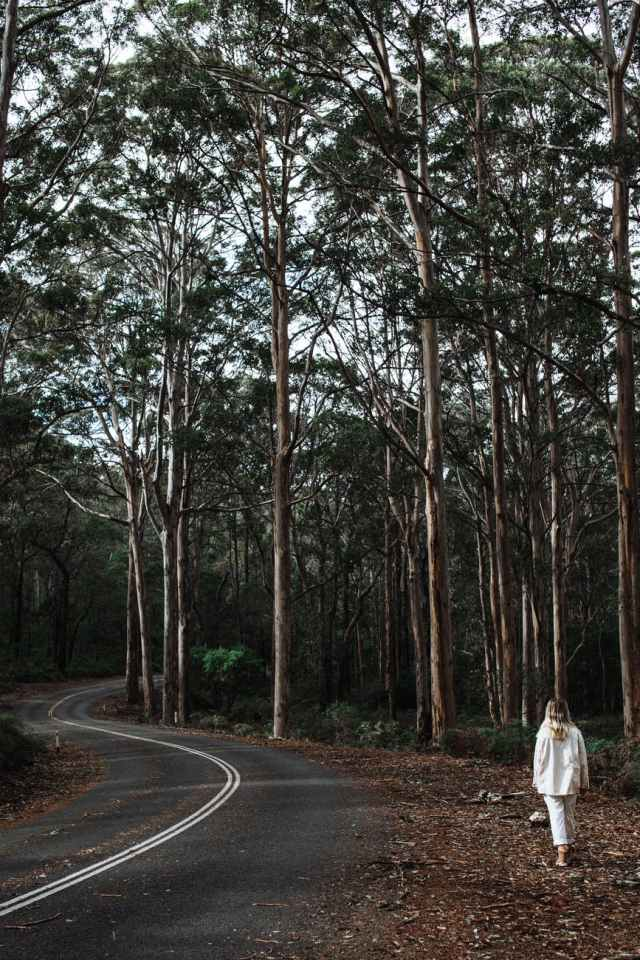 anonymous lady walking on road in forest