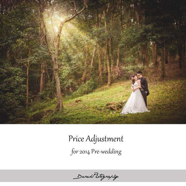 Pre-wedding Price adjustment 2014