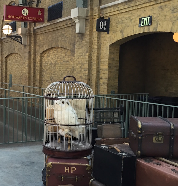 Someone's luggage and owl waiting on the train, initials HP...
