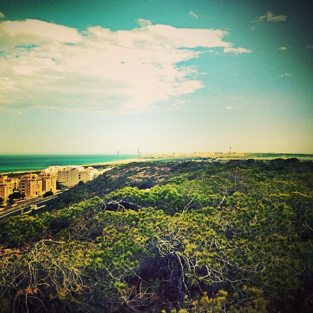 #moncayo #guardamar #torrevieja #costablanca #spain #españa - from Instagram