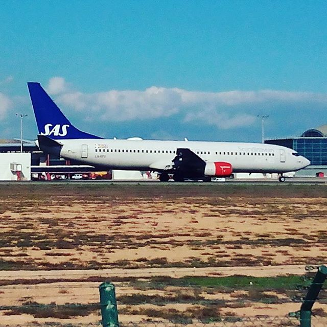 #alicante #elche #airport #sas #oslo - from Instagram