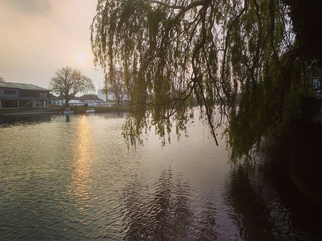 #sunset #RiverThames #weepingwillow #autohash #UnitedKingdom #England #reflection #water #tree #river #lake #landscape #park #nature #dawn #pool #light #outdoors #wood #sky #environment #season #flood #sun - from Instagram