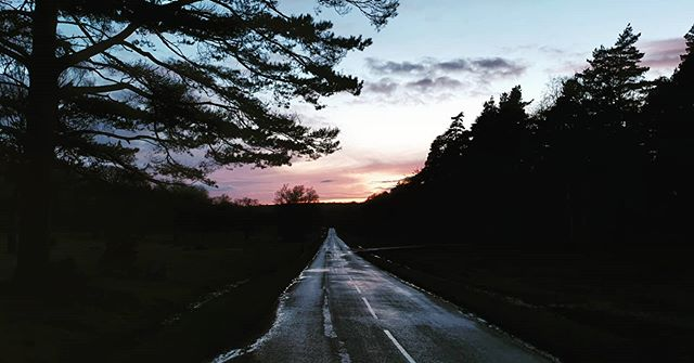 #autohash #UnitedKingdom #England #road #tree #landscape #guidance #nature #sky #panoramic #evening #dawn #outdoors #highway #light #travel #traveling #visiting #instatravel #instago #dusk #scenic #wood #dark #season - from Instagram