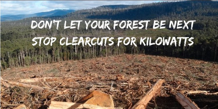 Biomass energy from forests is a delusion. Don't let your forest be next. Stop clearcuts for kilowatts.