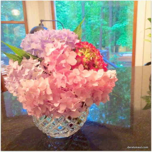 the hydrangea look good inside too