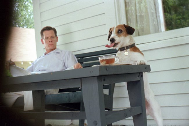 Image result for kevin bacon diane lane my dog skip