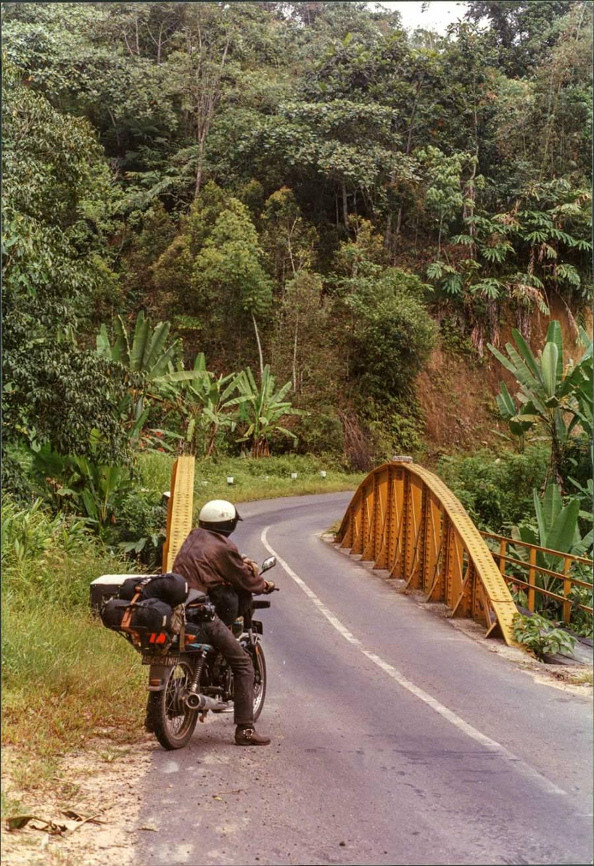 Motorrad mit Fahrer, Strasse, Brücke und tropischer Wald