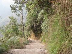 Der Machu Picchu-Aufstieg