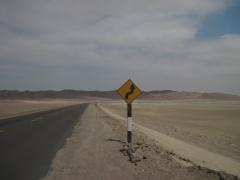 Strasse durch die Reserva Nacional