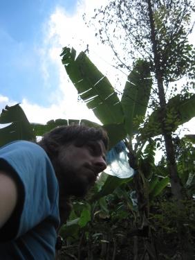 Ich beim wandern unter Bananenstauden