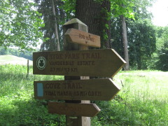 Schoener, aber anstrengender Trail
