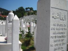 Ein ganzer Friedhof für 3 Jahre