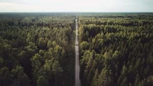 Eine Ode an das Baltikum