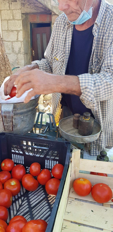 Wochenmarkt Zadvarje Dalmatien