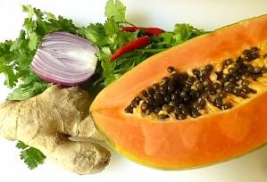 Papaya, Ingwer, Korianderkraut, blaue Zwiebel und Chili