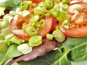 Tomaten, Salat und Frühlingszwiebel