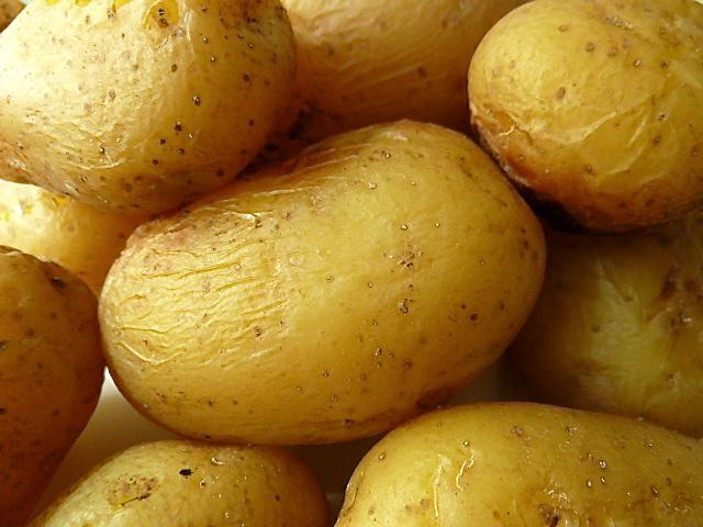 Matjeshering und Kartoffelsalat mit grünen Bohnen